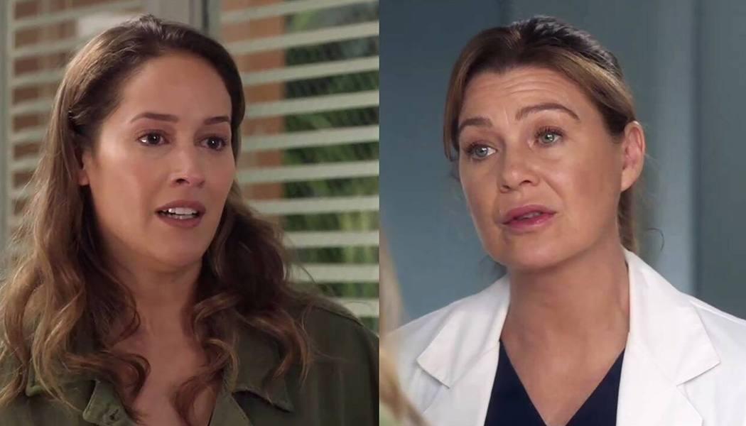 Grey's Anatomy impactada Station 19