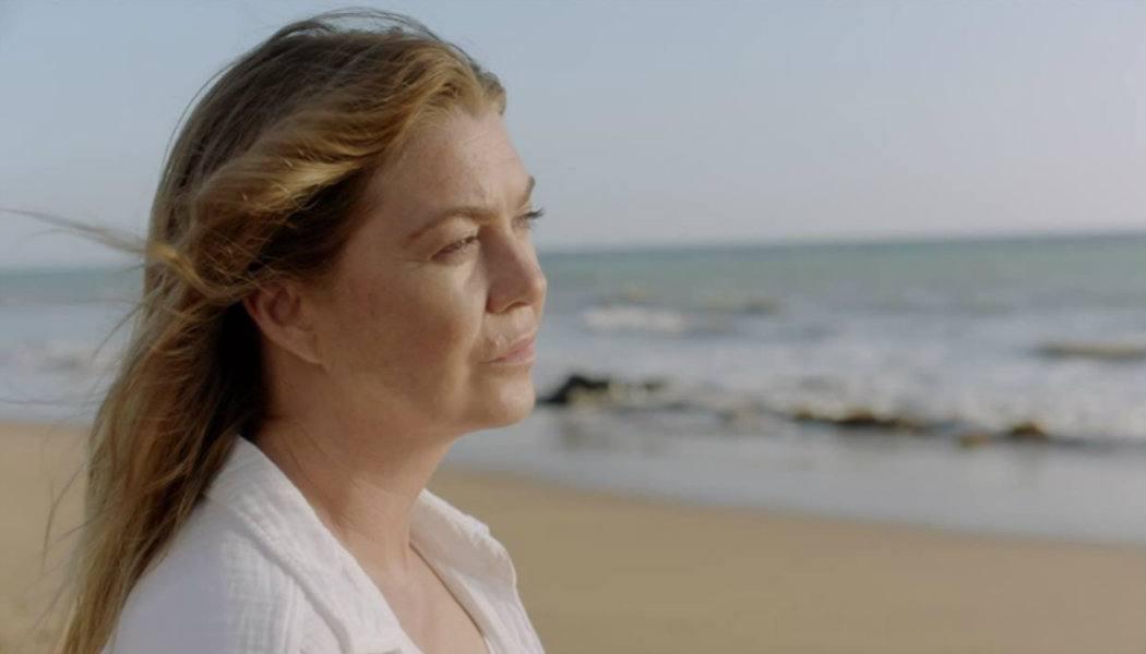 Crítica Grey's Anatomy estreia 17 temporada