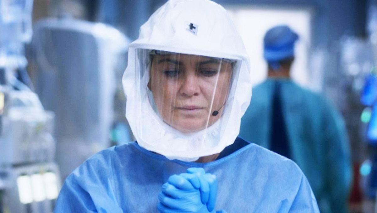 Greys Anatomy 17 temporada brasil