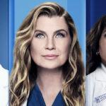 Greys Anatomy 18 temporada brasil